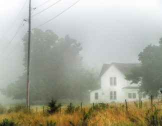 H1527D - Hammond, David - Fog House