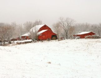 H1533D - Hammond, David - Union Co. Barn & Snow