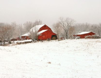 H1533D - Hammond, David - Union Co. Barn & Snow