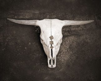 R1222D - Ryan, Brooke T. - Sepia Cattle Skull