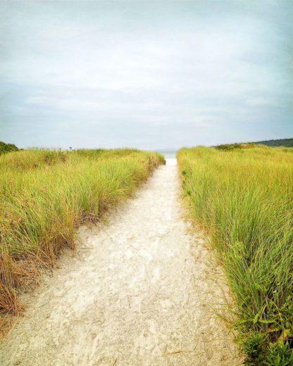 R1224D - Ryan, Brooke T. - Beach Trail