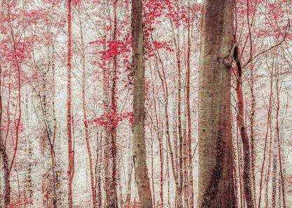 R1226D - Ryan, Brooke T. - Pink & Brown Fantasy Forest