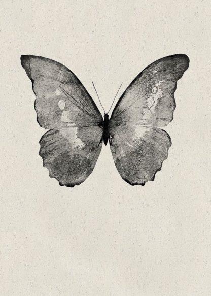 MF969-0803 - Design Fabrikken - Black Butterfly on Tan