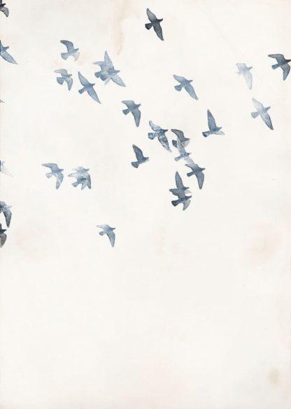 MF969-0888 - Design Fabrikken - Pigeons Sky