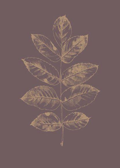 MF969-1079 - Design Fabrikken - Botanica 2
