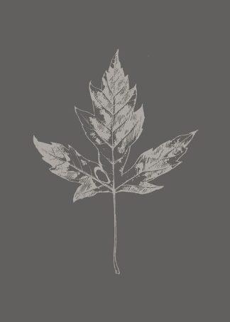 MF969-1080 - Design Fabrikken - Botanica 5