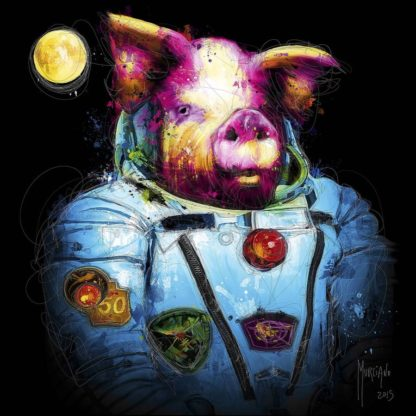 IG8318 - Murciano, Patrice - Pig in Space