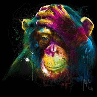 IG8633 - Murciano, Patrice - The Darwin's Preoccupations