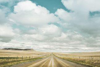 A594D - Annie Bailey Art - Dirt Road Travels