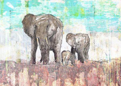 B3744D - Baran, John - Elephant Family