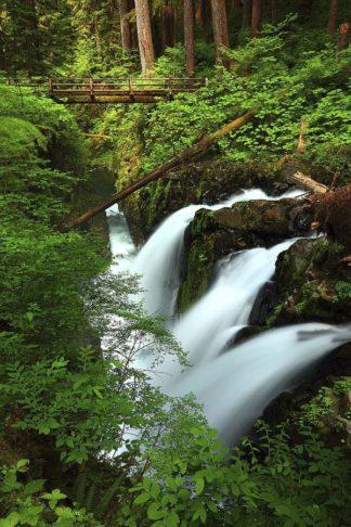 H1550D - Hodges, Randall J. - Sol Duk Falls, Olympic NP