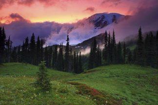 H1551D - Hodges, Randall J. - Mt. Rainier, WA