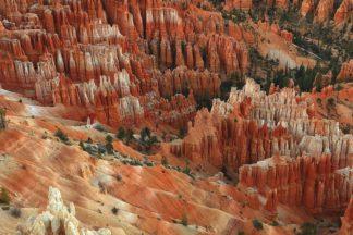 H1565D - Hodges, Randall J. - Hoodoos, Bryce Canyon