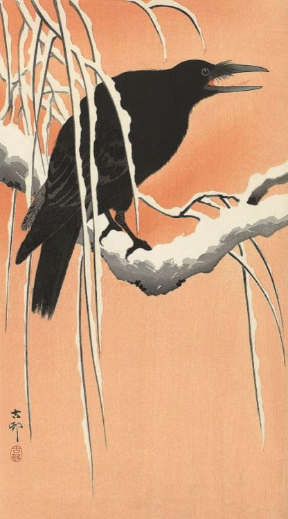 K2718D - Koson, Ohara - Crow on a Snowy Bough, 1900-1930
