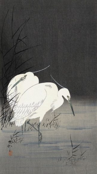 K2724D - Koson, Ohara - Two Egrets in the Reeds, 1900-1930