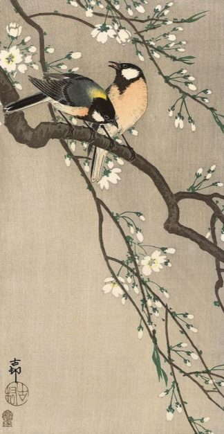 K2725D - Koson, Ohara - Songbirds on Cherry Branch, 1900-1910