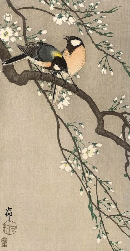 K2725D - Koson, Ohara - Songbirds on Cherry Branch, 1900-1910