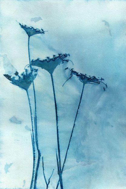 M1667D - McCurdy, Krista - Blue Anne