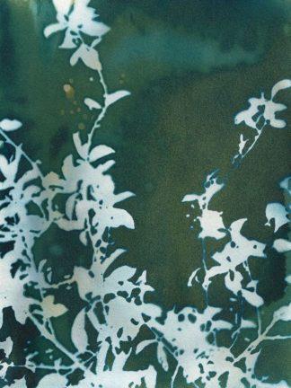 M1668D - McCurdy, Krista - Dark Garden