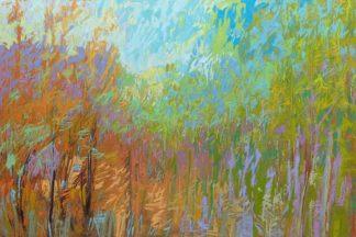 S1811D - Schmidt, Jane - Color Field 55