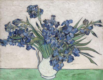 V732D - Van Gogh, Vincent - Irises, 1890 (White Vase)