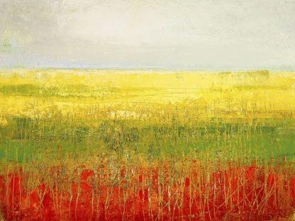 IG3931 - Morten, Jane - A Field of Marigolds