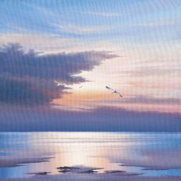 IG6263 - Sim, John F - Sunset Flight