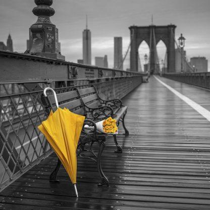 IG7293 - Frank, Assaf - New York II