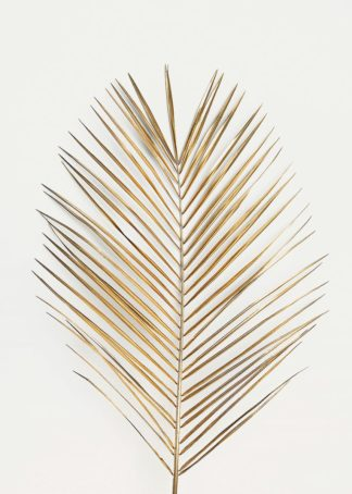 MF969-1444 - Design Fabrikken - Palm Leaf Gold