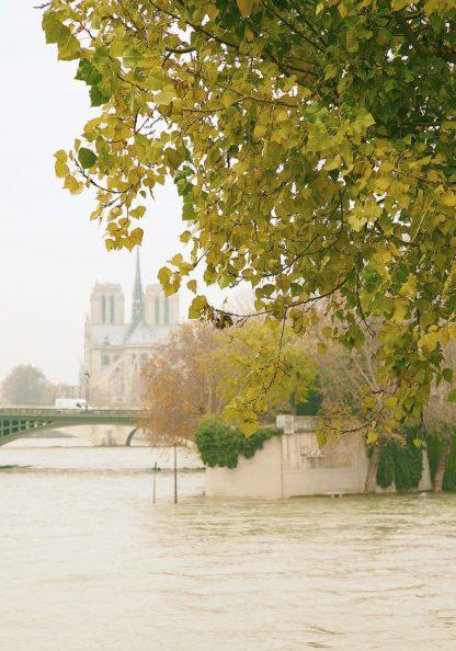 O348D - Okula, Carina - Notre Dame 2