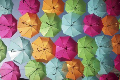 O364D - Okula, Carina - Portugal Umbrella 1
