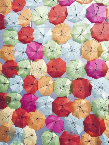 O365D - Okula, Carina - Portugal Umbrella 2