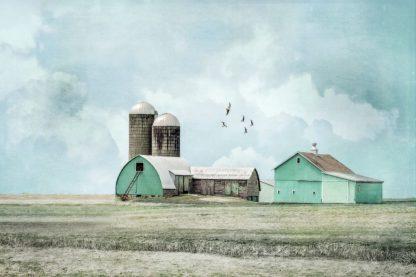 R1244D - Ryan, Brooke T. - Aqua Barns