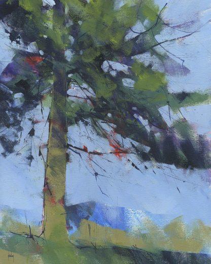 B3783D - Bailey, Paul - Gilfach Pine