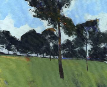 B3787D - Bailey, Paul - Moorland Pines