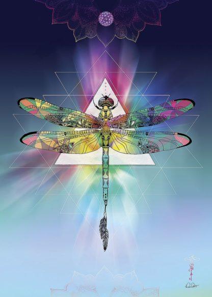 R1268D - Roberts, Karin - Cosmic Dragonfly