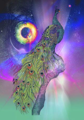 R1271D - Roberts, Karin - Cosmic Peacock