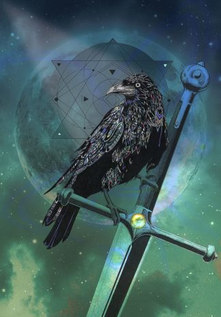 R1272D - Roberts, Karin - Cosmic Raven