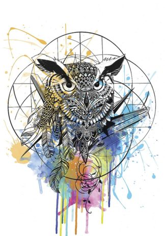 R1279D - Roberts, Karin - Owl