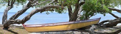 V740D - Vaughn, Steve - Yellow Bird Boat