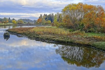 B3837D - Burdick, Chuck - Estuary Autumn