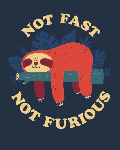 B3850D - Buxton, Michael - Not Fast, Not Furious