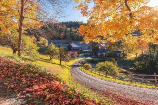 G2073D - Getty, Bruce - Sleepy Hollow Ranch, Vermont