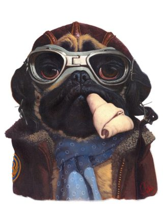 F786D - Fluharty, Thomas - Aviator Pug