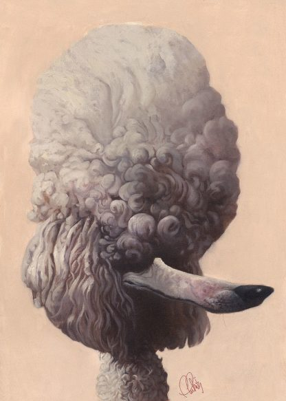 F798D - Fluharty, Thomas - Poodle