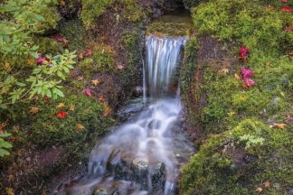 O396D - Oldford, Tim - Tranquility Falls