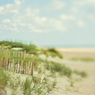 S1869D - Soffia, Myan - Sand Dunes