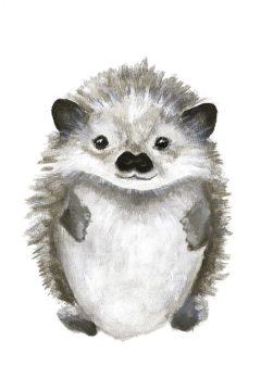 MF952-0683 - Design Fabrikken - Little Hedgehog