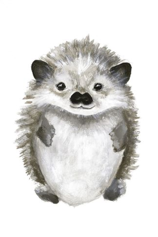 MF952-0683 - Design Fabrikken - Little Hedgehog