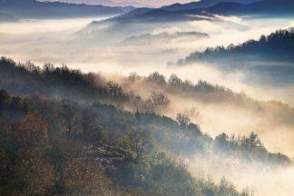 A647D - Artemiadi, Dora - These Magic Moments